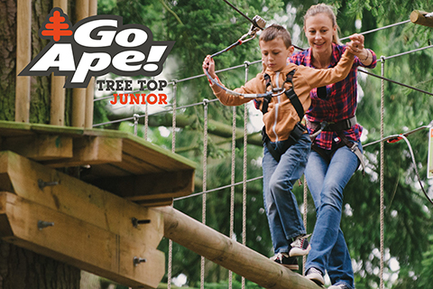 Go Ape Tree top Junior - a great day out for the active family from £16